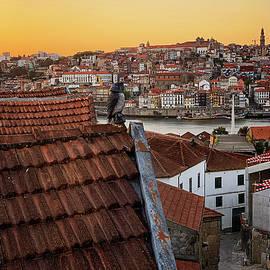 Birdseye View of Porto by Jill Love