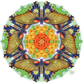 Birdwing Trumpet Blossom Nature Mandala by Tim Phelps