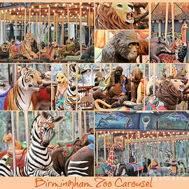 Birmingham Zoo Carousel Collage by Diann Fisher