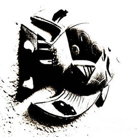 Black and White Fish Art by Beverly Guilliams
