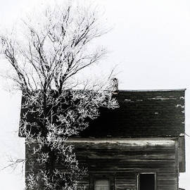 Black and White House in the Deep Freeze of Central, North Dakota. by Delynn Addams