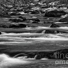 Black And White Little River 2 by Phil Perkins