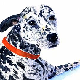 Black and White Spotted Dog by Carlin Blahnik CarlinArtWatercolor
