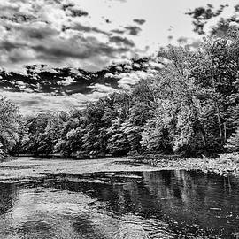 Black And White Stormy Creekside by Denise Harty