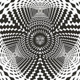 Black and White Trippy Optical Illusion 2 by Douglas Brown