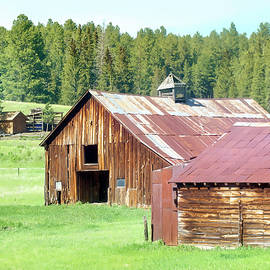 Black Hills Barns Weathered Wood by Cathy Anderson