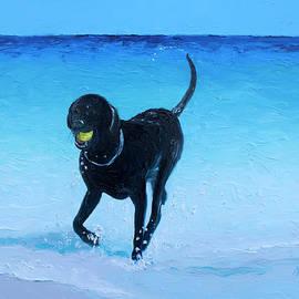 Black Labrador fetches the ball by Jan Matson