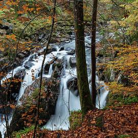 Black Linn Falls II by Cliff Green