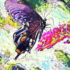 Black Magic Butterfly by Tina LeCour