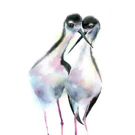 Black-necked stilt  by Paintis Passion