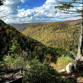 Blackwater Canyon In October 5 by Daniel Beard