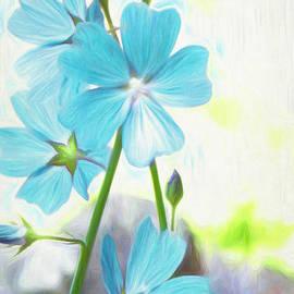 Bleue by Rebecca Langen
