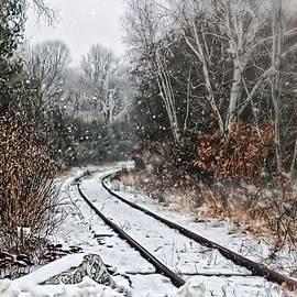 Blizzard Tracks by Catherine Melvin
