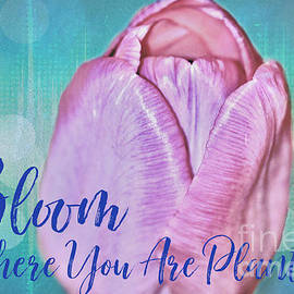Bloom Where You Are Planted by Diann Fisher