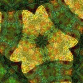 BloomDigital 14Feb2021 by Darius Xmitixmith