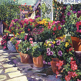 Blooming Flower Pots by David Lloyd Glover