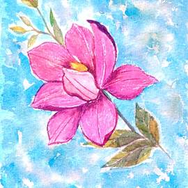 Blooming Magnolia  by Sonali Gangane