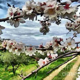 Blossoming Almond Tree by Yorgos Daskalakis