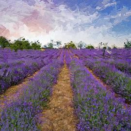 Scent of lavender by Rita Di Lalla