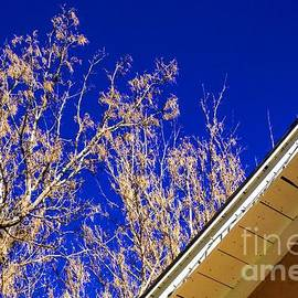Blue and Adobe Contrasts by Jon Burch Photography