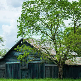 Blue Barn by Mary Ann Artz