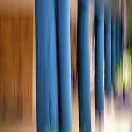 Blue Columns by Jan Fijolek