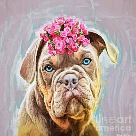 Blue Eyed Bulldog by Tina LeCour