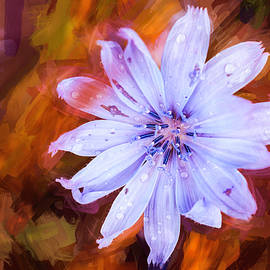 Blue Flame by Jim Love