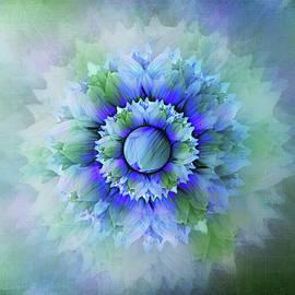 Blue Flower Mandala by Terry Davis