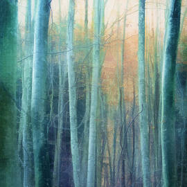Blue Forest by Terry Davis