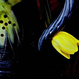 Blue Handle and Tulip by Alida M Haslett