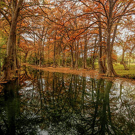 Blue Hole Regional Park 2 by Judy Vincent