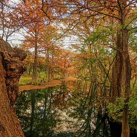 Blue Hole Regional Park Vertical by Judy Vincent