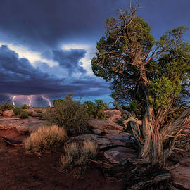 Blue hour at Dead Horse Point by Murray Rudd