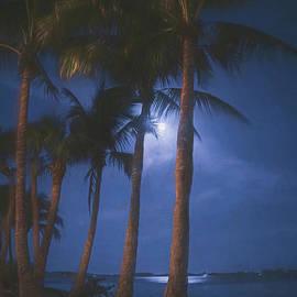 Blue Hour Moon on Bird Key, Sarasota, Florida, Painterly by Liesl Walsh