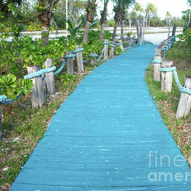 Blue Hue Pathway by Mary Mikawoz