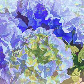 Blue Hydrangea Artistic 1  by Linda Brody