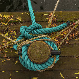 Blue Knot by Stelios Kleanthous