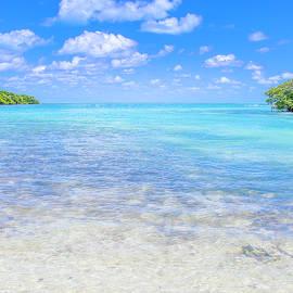 Blue Lagoon by Mark Andrew Thomas