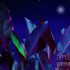 Blue night by Larisa Fedotova