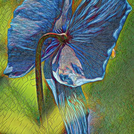 Blue Poppy Stained Glass Three by Mo Barton