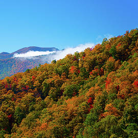 Blue Ridge Autumn by Gales Of November
