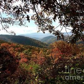Blue Ridge Parkway in October by Eunice Warfel