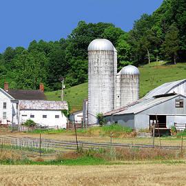 Blue Ridge Mountain Farm by Douglas Taylor