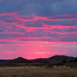 Blue Sky Pink by Katie Keenan