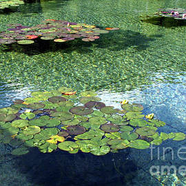 Blue Tranquility - Reflection Pond by Kathryn Jones