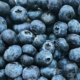 Blueberries Waiting For Jam by Alida M Haslett
