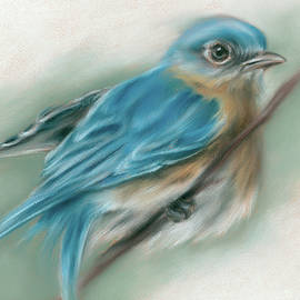 Bluebird Perched on a Twig by MM Anderson