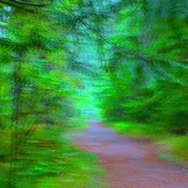 Blurry Path by Ian Baird