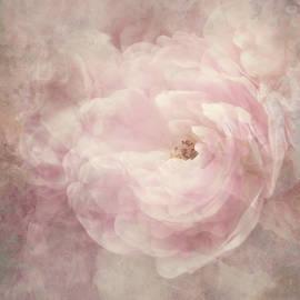 Blushing Bride by Claudia Moeckel